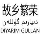 故乡繁荣 DIYARIM GULLAN