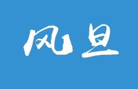 风旦logo