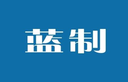 蓝制logo