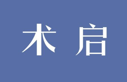 术启logo