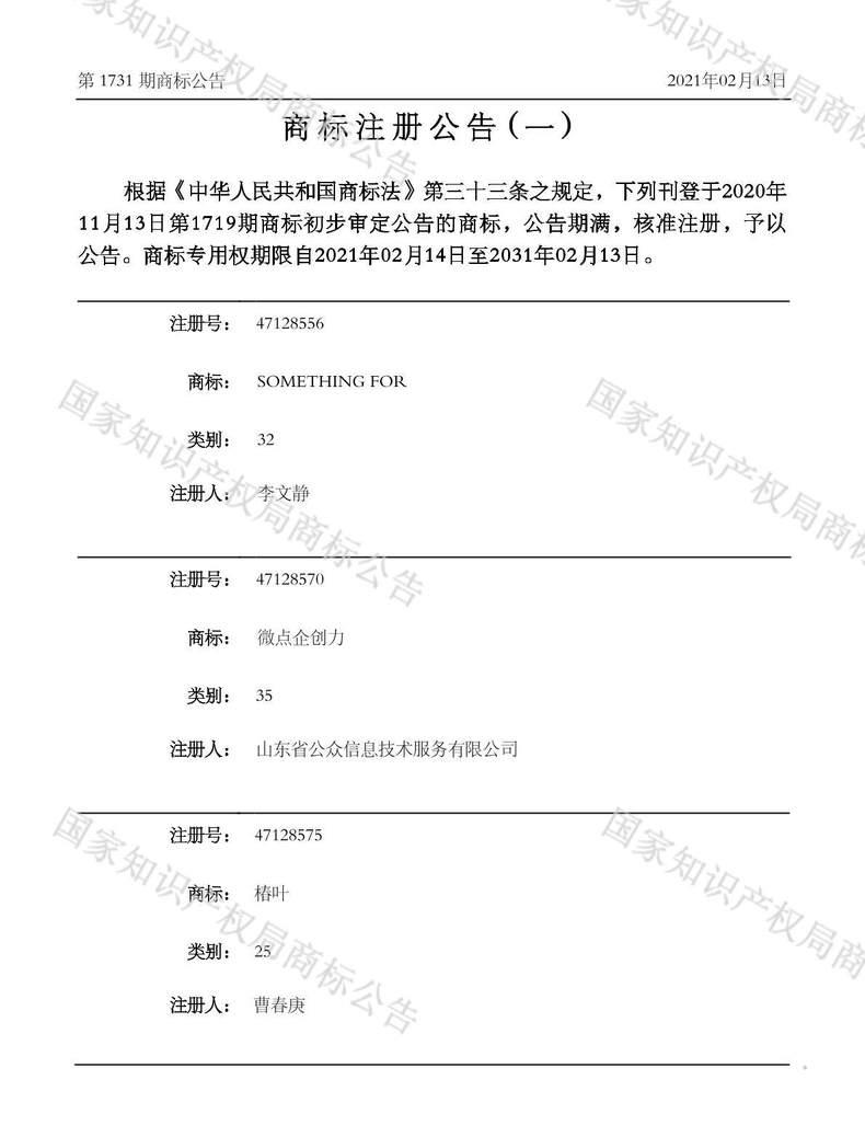 SOMETHING FOR商标注册公告(一)