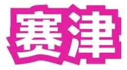 赛津logo