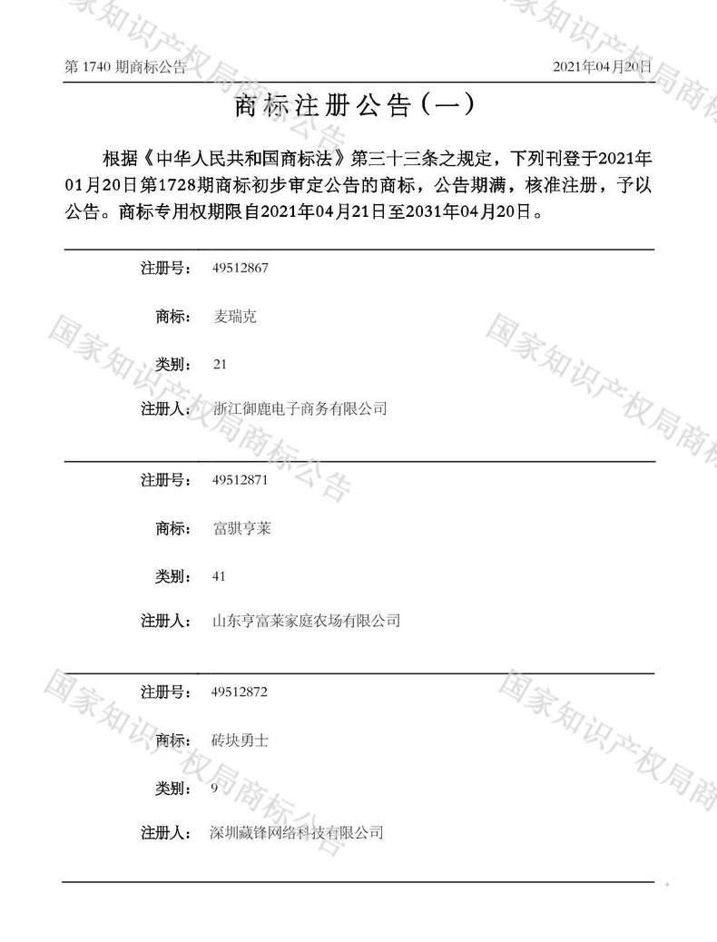 砖块勇士商标注册公告(一)