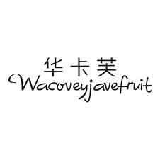 华卡芙 WACOVEYJAVEFRUIT